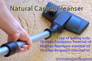 Natural Carpet Cleanser