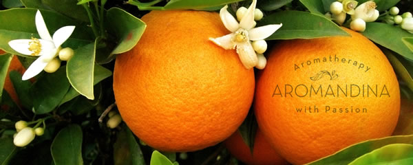 sweet-orange-essential-oil-aromandina